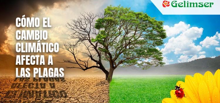 Cómo el cambio climático afecta a las plagas